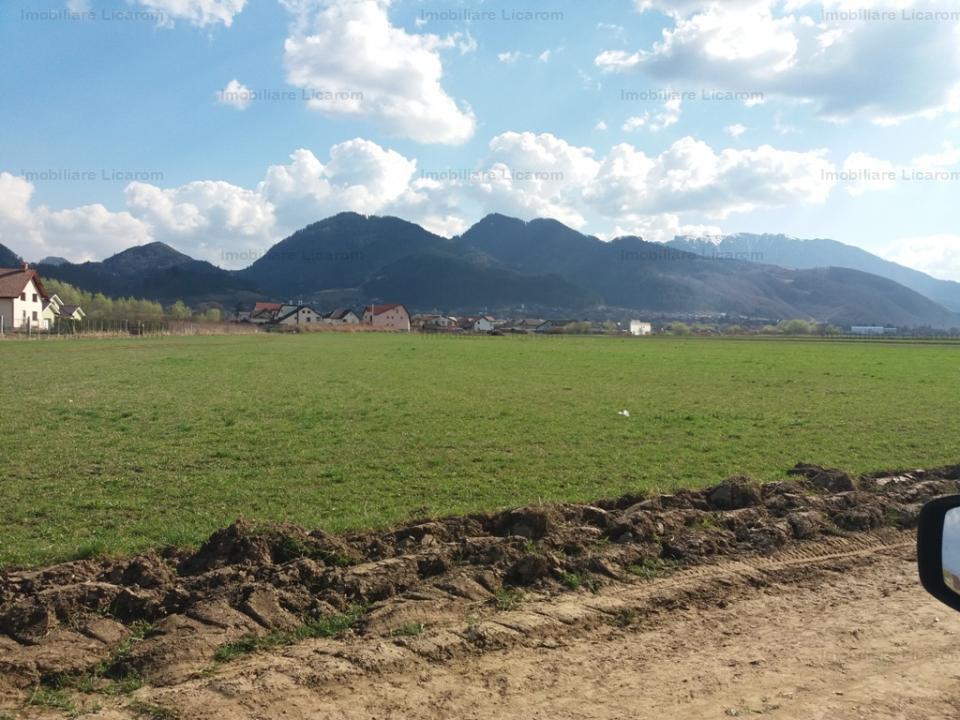 Teren intravilan pentru constructii vile Sacele Turches str  Ciucas - Postavarului