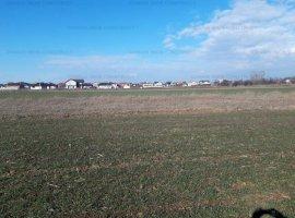 Teren pretabil pentru dezvoltare de case si vile In Clinceni