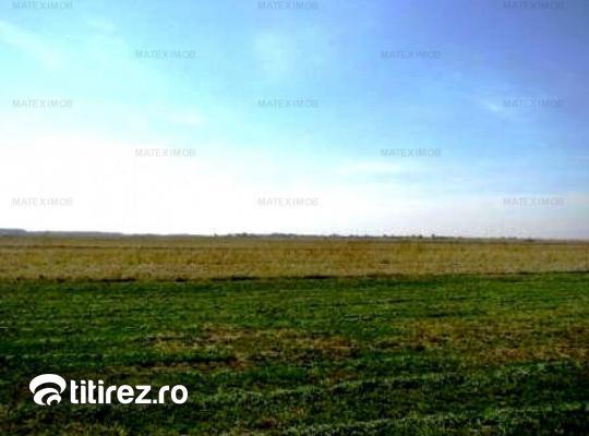 Dambovita Butimanu, teren 18500 mp, intravilan si agricol