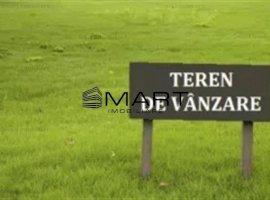 Teren 1680 mp Tocile de Jos (Sadu)