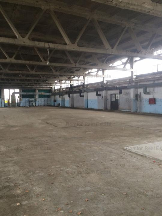 Industrial space for rent - Chitila