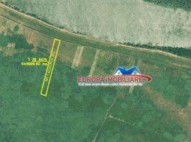 Vanzare  terenuri constructii  6000 mp Tulcea, Nufaru  - 3000 EURO