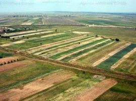 Vanzare teren constructii 320000 mp, Nalbant, Nalbant