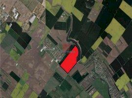 Vanzare teren constructii 400000 mp, Central, Popesti-Leordeni