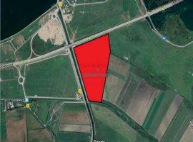 Vanzare teren constructii 220000 mp, Cernica, Cernica