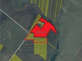 Vanzare teren constructii 220000 mp, Central, Popesti-Leordeni