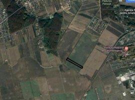 Vanzare teren constructii 4000 mp, Paradisul Verde, Corbeanca