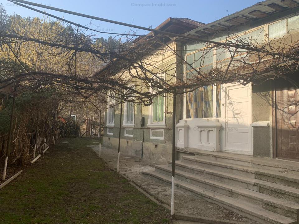 Oportunitate Investitie Piatra Neamt, str. Petru Rares, ultracentral