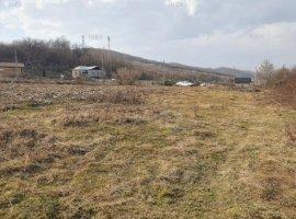 iNEX.ro   Teren în Bascov   Prislop   2.688 mp