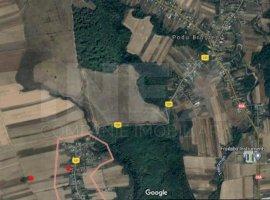 Teren pretabil ferma/casa cu acces la utilitați in Costesti, Arges