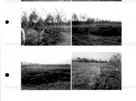 De vanzare (licitatie) teren arabil intravilan 3756 mp Dumbrava Rosie, judet Neamt