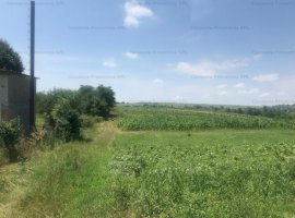 Teren de vanzare (licitatie) 1000 mp Siret, sat Manastioara, jud. Suceava
