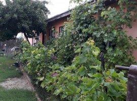 Casa de vanzare Stefanesti, Condoiesti, jud Valcea