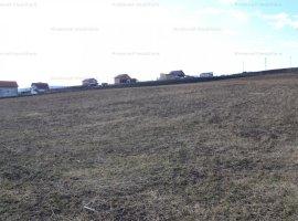 Teren 11.400mp cu drum de acces in Sura Mare