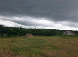 teren intravilan zona Tomesti deal