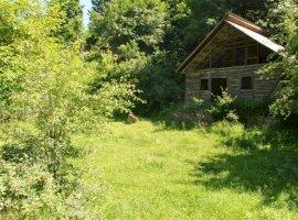 Vanzare  terenuri constructii  1098 mp Buzau, Varlaam  - 15000 EURO