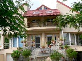 Casa Vila 8 camere Iancu Nicolae