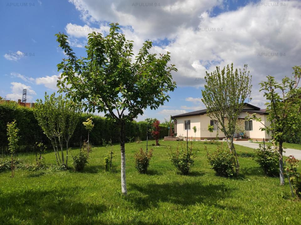 Vila 9 camere Domnesti/Olteni, pretabil Gradinita/After school