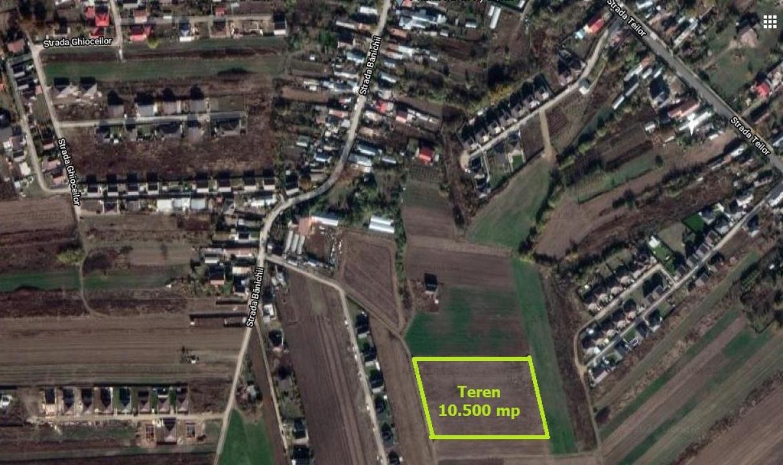 Săbăreni, teren intravilan rezidential 10.500 mp cu 84 m front stradal