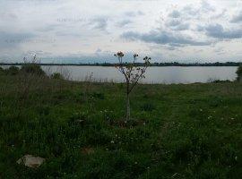Pantelimon-teren Lac Lebada
