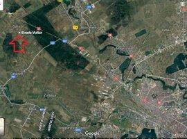 Teren zona Tartasesti - Gulia