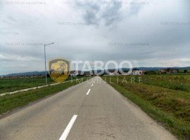 Teren 22000 mp in Sura Mica pretabil investitie parcelare de vanzare