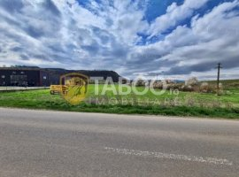 Teren 12500 mp in zona Industriala de vanzare in Sebes