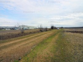 Branesti/ Makita, teren intravilan 6000 mp, ideal constructii industriale