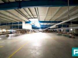 Hală industrială 2.642 mp în Lipova