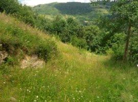 Vanzare  terenuri constructii  9000 mp Cluj, Muntele Rece  - 11000 EURO