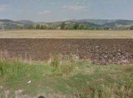 Inchiriere  terenuri constructii Alba, Vintu de Jos  - 0 EURO lunar