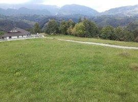 Vanzare  terenuri constructii  2000 mp Brasov, Drumul Carului  - 0 EURO