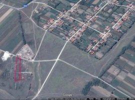 Vanzare  terenuri constructii  5000 mp Timis, Jabar  - 19000 EURO