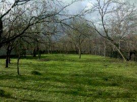 Vanzare  terenuri constructii Prahova, Stefesti  - 3 EURO