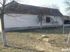Vanzare  casa Timis, Birda  - 29 EURO