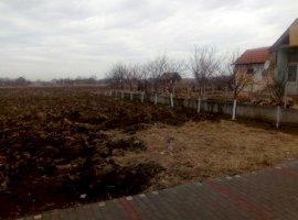 Vanzare  terenuri constructii Timis, Comlosu Mare  - 28000 EURO