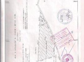 Vanzare  terenuri agricol Dolj, Simnicu de Jos  - 0 EURO