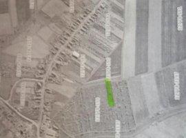 Vanzare  terenuri agricol Arad, Zabrani  - 630 EURO