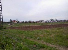 Vanzare  terenuri agricol Dolj, Dudovicesti  - 0 EURO