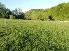 Vanzare  terenuri agricol Brasov, Acris  - 0 EURO