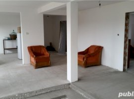 Vanzare  casa  2 camere Timis, Beregsau Mare  - 136000 EURO