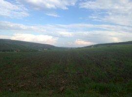 Vanzare  terenuri constructii Cluj, Corusu  - 0 EURO