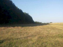 Vanzare  terenuri constructii Arges, Poiana Lacului  - 0 EURO