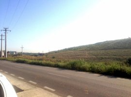 Vanzare  terenuri agricol  4998 mp Iasi, Visan  - 0 EURO