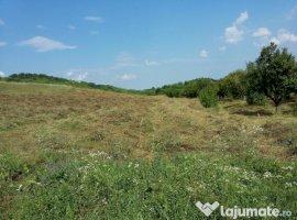 Vanzare  terenuri constructii  18.5 ha Dambovita, Razvad  - 0 EURO