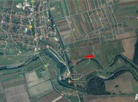 Vanzare  terenuri constructii  14.5 ha Timis, Sag  - 0 EURO