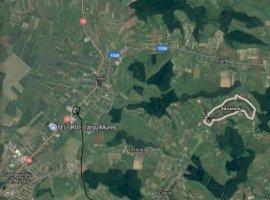 Vanzare  terenuri constructii Mures, Sacareni  - 0 EURO