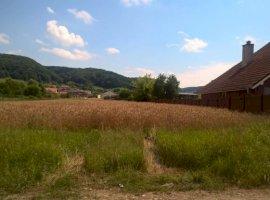 Vanzare  terenuri constructii Mures, Albesti  - 0 EURO