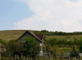 Vanzare  terenuri constructii Cluj, Pata  - 0 EURO