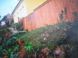 Vanzare  casa  4 camere Timis, Clopodia  - 15000 EURO